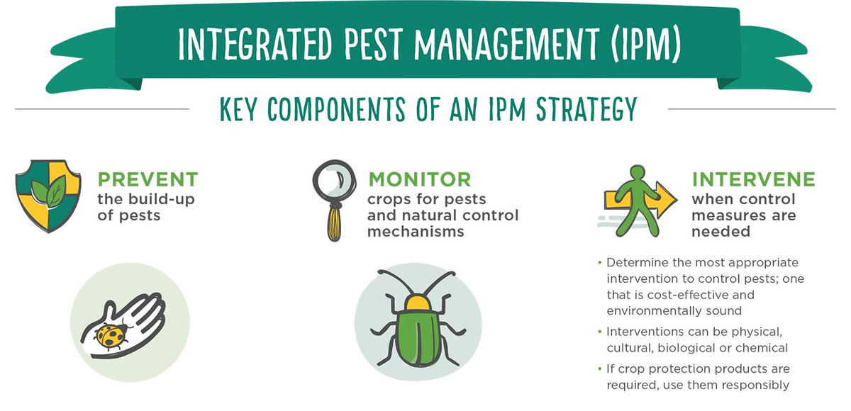 Integrated Pest Management includes preventing pest establishment, monitoring plants for pest presence, and intervening starting with natural methods and working up to chemicals use only if needed.